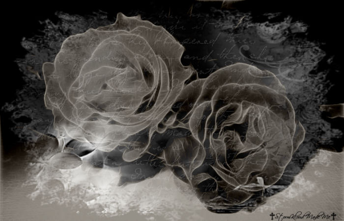 Gothic-background with two white roses